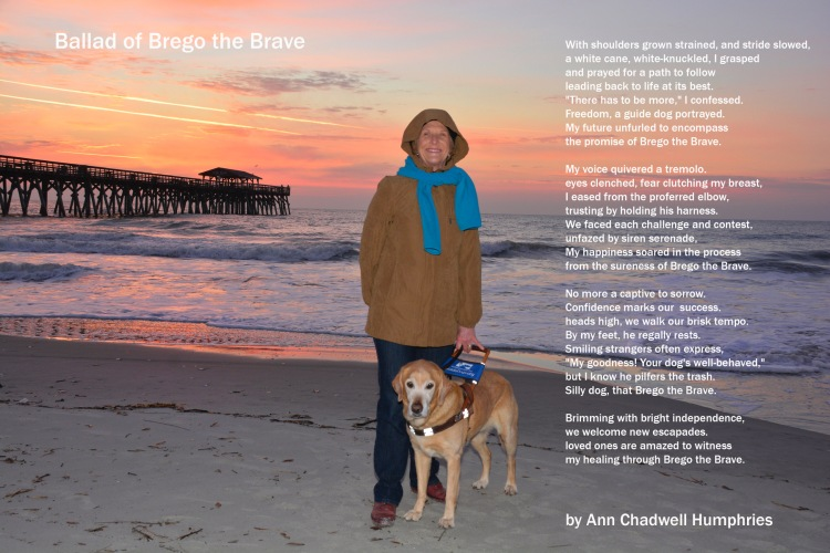 Ann and Brego are on the sand at a South Carolina beach. Ann is holding Brego's harness on her left side. It's sunset and there's a big fishing pier in the background. It's chilly and Ann is wearing a jacket with the hood up.