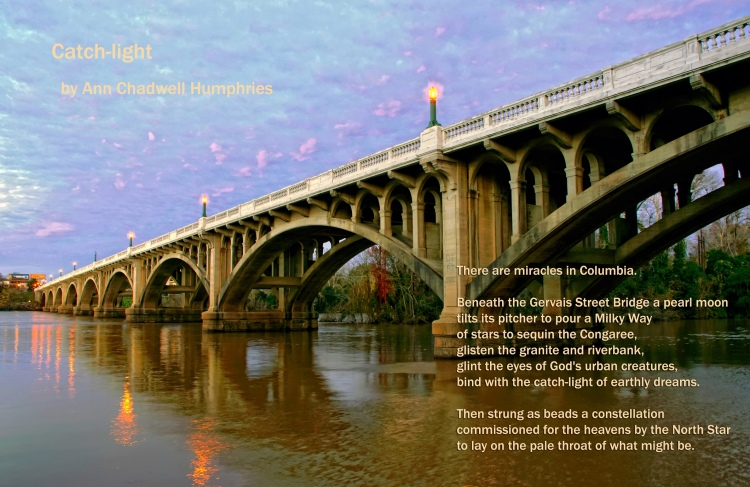 The Gervais Street Bridge in Columbia, South Carolina at sunset. Viewed from the river bank below and looking up at the bridges arches. The bridge lights are on and the sky is a light lavender at sunset.